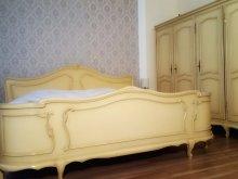 Bed & breakfast Conțești, Zira Residence Guesthouse