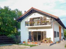 Accommodation Romania, Silva B&B