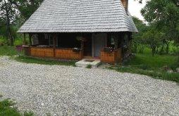 Vilă Breb, Casa Călina