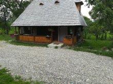 Vilă Călinești-Oaș, Casa Călina