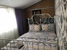 Accommodation Ștorobăneasa, Bucharest Center Villa