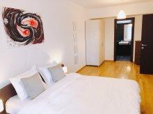 Accommodation Suseni-Socetu, Vision Apartment