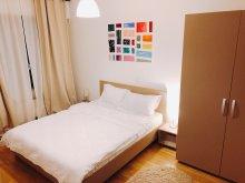 Accommodation Suseni-Socetu, Ambient Apartment