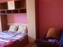 Apartament Vama Veche, Apartament Ronny 1
