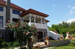 Villa Delureni (Stoilești), Conacul Malul Alb Villa