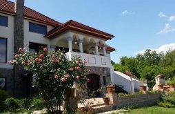 Villa Drăgănești (Golești), Conacul Malul Alb Villa