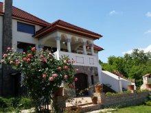 Villa Rugetu (Mihăești), Conacul Malul Alb Villa