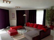 Accommodation Nemesvita, Tea Apartment