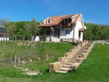 Kulcsosház Secaș, Vladimir Kulcsosház