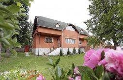 Accommodation Izvoru Mureșului, Csermely Guesthouse
