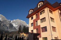 Accommodation Masivul Ciucaș, IRI Hotel