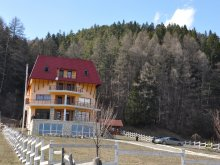 Accommodation Gura Siriului, Zenit B&B