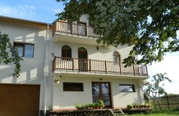 Bed & breakfast Potlogeni-Deal, Belegania Villa