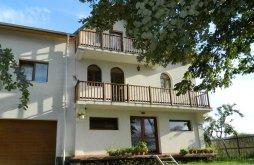 Szállás Petrești, Belegania Villa