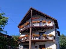 Accommodation Piatra Fântânele, Beatrice Guesthouse