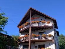 Accommodation Prisaca Dornei, Beatrice Guesthouse