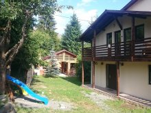 Accommodation Livezile, Colibița Chalet