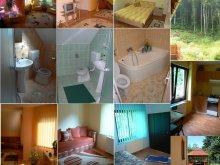 Accommodation Chibed, Orbán Villa