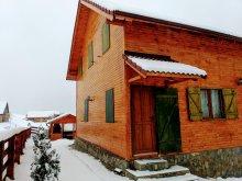 Casă de vacanță Pleșoiu (Nicolae Bălcescu), Casa Magnolia