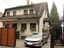 Accommodation Mezőszilas, Balatoni Apartments 3