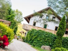 Accommodation Hungary, Öko-Park Guesthouse