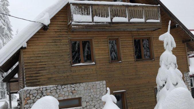 Alpin Villa Vârtop