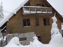Vilă Modolești (Vidra), Vila Alpin