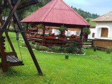 Panzió Szucsáva (Suceava) megye, Gabriela Panzió