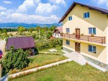 Accommodation Pleșoiu (Livezi), Maria-Mihaela B&B