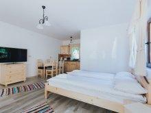 Bed & breakfast Dănești, Biscontini's Studio Guesthouse