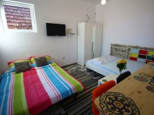 Accommodation Cluj county, Arhica Studio