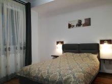 Accommodation Cornești (Mihai Viteazu), Tichet de vacanță, Arhica Still Apartment