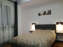 Cazare Vârtop, Apartament Arhica Still