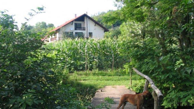 Erdőalja-Guesthouse Jásd