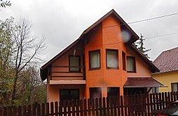 Villa Mureş county, Orbán Villa