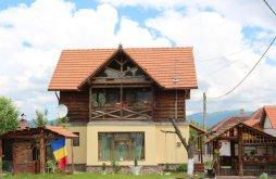 Chalet near Densuș Church, Ollie Vacation home