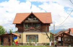 Chalet near Prislop Monastery, Ollie Vacation home