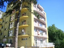 Accommodation Mehadia, International Hotel