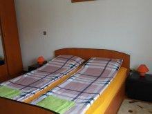 Casă de vacanță Pârâu-Cărbunări, Casa de vacanță Ru & An