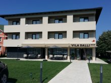 Villa Cetea, Dalli Villa
