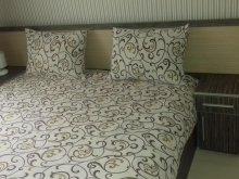 Apartment Remetea, Camelia Apartment