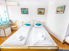 Accommodation Sibiu county, Ultracentral Apartment