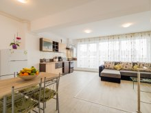 Apartman Brassó (Braşov) megye, Sunny Duplex Penthouse by Transylvania Boutique
