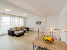 Apartament Sfântu Gheorghe, Sunset Duplex Penthouse ~ Transylvania Boutique