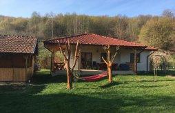 Accommodation Festival of Dacian Fortresses Cricău, Căsuța de sub pădure  House