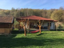 Nyaraló Szebenjuharos (Păltiniș), Kis ház az erdő alatt