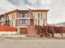 Villa Aranyosgyéres (Câmpia Turzii), Tichet de vacanță, The K Guest House