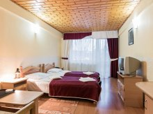 Accommodation Gura Humorului, Simeria Hotel