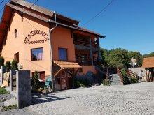 Accommodation Cetatea Rupea, Norbert B&B