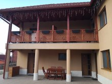 Accommodation Câmpu Cetății, Tofi Guesthouse